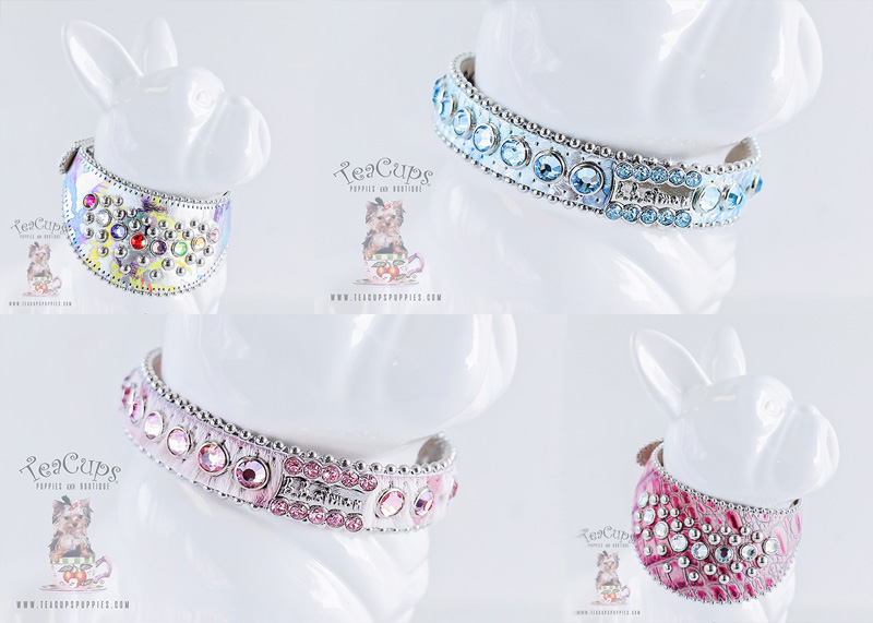 B.B. Simon Luxury Crystal Dog Collars at TeaCup Puppy Boutique