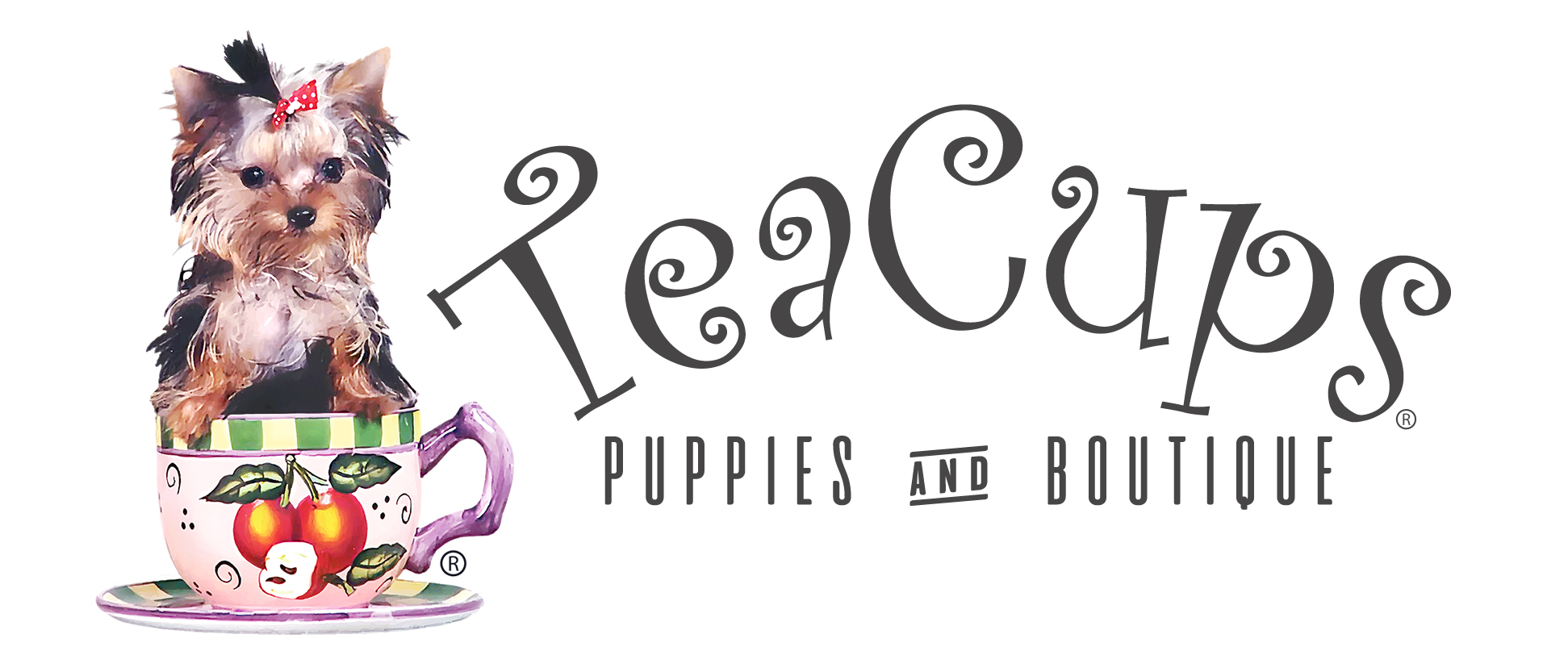 Teacups, Puppies & Boutique
